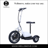 Adult 350W 36V12ah Electrical Bicycle Three Wheels Mobility Scooter