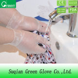 Clear Clean Room Protective Gloves