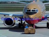 Promotional China Air Cargo Shipment with Best Rate to Dubai