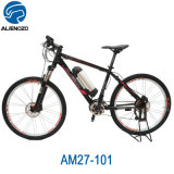 MID Drive Motor Electric Bicycle Mountain Bike