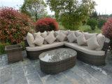 Fashionable Garden Rattan Sofa Sets