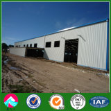 Pre Engineered Buildings for Sale From Qingdao Xinguangzheng Group