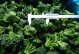 New Crop IQF Frozen Broccoli