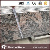 China Paradiso Countertop Tile/ Stair / Slab / Paver /Tombstone/
