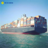 40FT Shipping Container Price to Santos