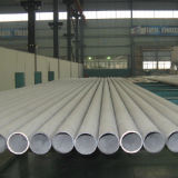 310S Seamless Stainless Steel Pipe with High Quality