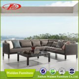 Special Woven Rattan Sofa Set (DH-9618)