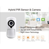 PIR Sensor Camera with IP WiFi Wireless for Home Security