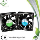 12V DC Cooling Fan 5020 Car Air Cooler Fan with Ce RoHS Certificate