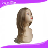 Mix Color Longer Style Synthetic Hair Wig Straight Hair Wig