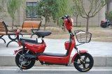 Hot Sale Electric Bike Q6