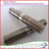 304/316 Stainless Steel /Carbon Steel Double Head B8 Stud Bolts