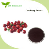 ISO Certified 100% Natural Cranberry Extract in Anthocyanidins