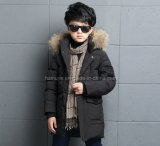 Three Color Winter Down Jacket for Boy