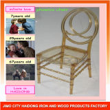 Wholesale Cheap Amber Clear Resin Phoenix Chair for Events