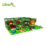 Custom Style Children Indoor Playground