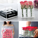 Qcy Hot Sale Wholesale Acrylic Rose Box for Gift