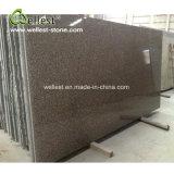 G664 Bainbrook Brown Granite Slabs for Countertop & Floor Tiles