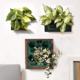 Garden Wood Photo Frame Single Hole Hydroponic Flower Pots Planter