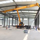 Light Duty Single Girder Overhead Eot Crane