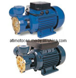 dB Kfo Kf1 Seris Peripheral Water Pumps