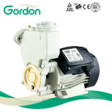 Electric Copper Wire Self-Priming Booster Pump with Stainless Steel Valve