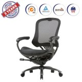 Ergonomic High Mesh Swivel Executive Chair with Adjustable Height Arm Rest and Lumbar Support Back for Home Office (LYL)