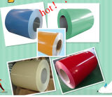 Widely Used PPGI Coil: Construction, Decoration