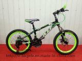 Children 20inch City Mountain Bike
