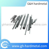 Best Selling Competitive Price Tungsten Carbide Rod