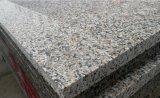 Natural Chinese New G664 Polished Granite Slab for Ecuador