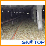 China Poultry Chicken Farm Equipment for Sale