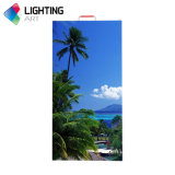 Light Weight P4.81 Full Color LED Screen Indoor Rental 500b