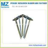 Yellow Zinc Umbrella Head Roofing Nail