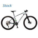 Factory Outlet Carbon Fiber Frame OEM Mountain Bike