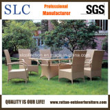 Garden Table Set/Garden Chair and Table/Rattan Chair (SC-B1012)