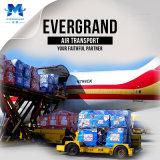 Reliable Shenzhen / Guangzhou / Hong Kong Air Cargo Freight Shipping Service