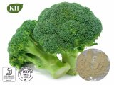 Broccoli Extract Containing Rich Ascorbic Acid