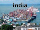 Cheap Ocean Shipping From Qingdao/Tianjin/Shanghai/Shenzhen to India