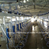 Automatic Cow Milking Machines Price for Dairy Farm