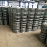 High Steel Galvanized Wire Farm Grassland Netting