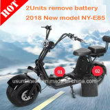 Two Seat Electric Scooter 2 Wheel Fat Tyre Citycoco with Double Removable Battery