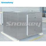 Refrigeration Equipment for Ice Storage