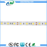 White indoor SMD 5050 energy saving hotel light LED strip