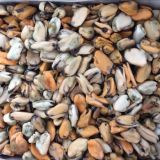 Frozen Cooked Mussel Meat 100-200