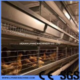 China Factory Supplier Automatic Poultry Farm Chicken Layer Cage Equipment Price