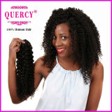 Quercy Hair Wholesale Indian Remy Hair 100 Unprocessed Remy Human Hair Extensions Natural Raw Indian Curl Human Hair