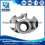 PTFE Spring Energized Seal for High Temperature