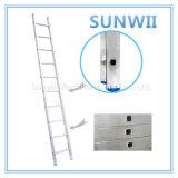 Aluminum/Aluminium/Steel Straight Ladder for Construction, Scaffold