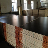 9mm High Quality Black Film Faced Plywood Factory